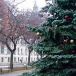 Városközpont karácsonyfával. Fotó dt. archív.