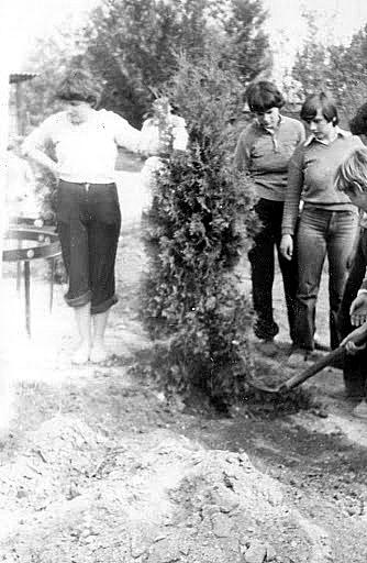 1981. május 9-én békefát ültettek a gyerekek a nevelőotthon udvarán.